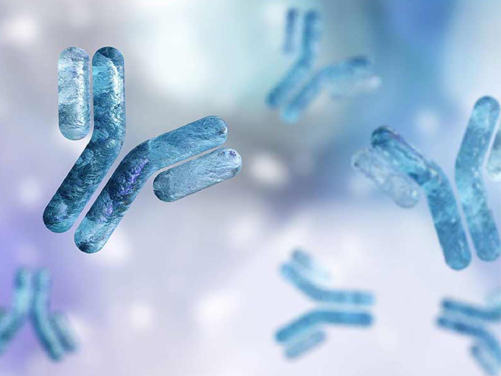 Fucose-deficient Anti-cancer Antibodies